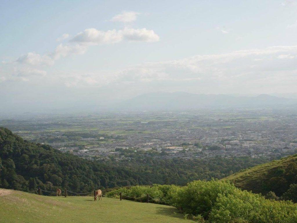 若草山山頂から photo aoi kawano